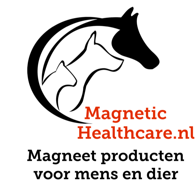Magnetic Healthcare